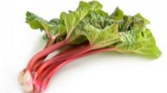 rhubarbe-web_1-300x168.jpg
